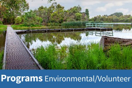 Wetland Programs