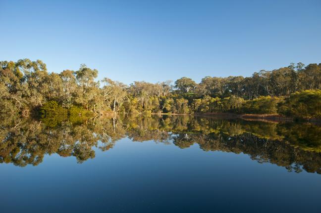 About Laratinga Wetlands | Mount Barker District Council